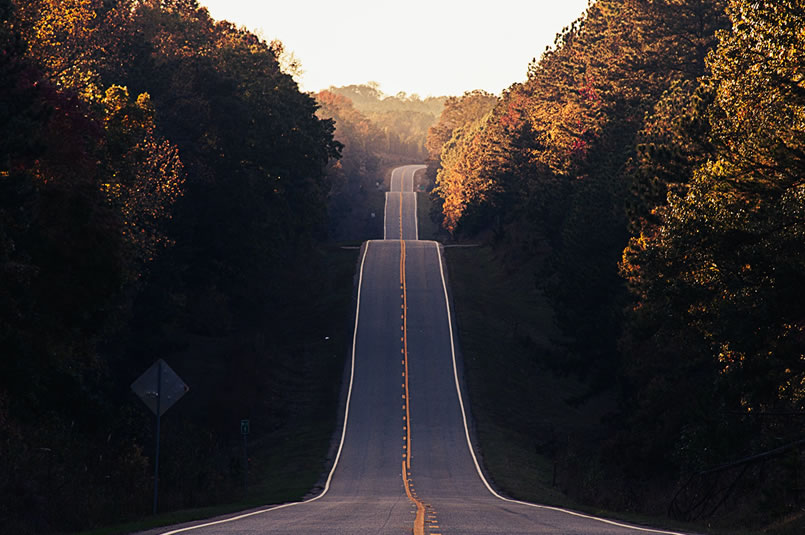 Market Volatility - Road to Recovery: A long, straight empty tree-lined road with multiple climbs and falls.